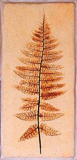grès de Bose, fougère des bois